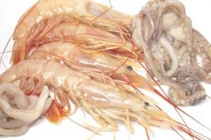 squid with shrimps